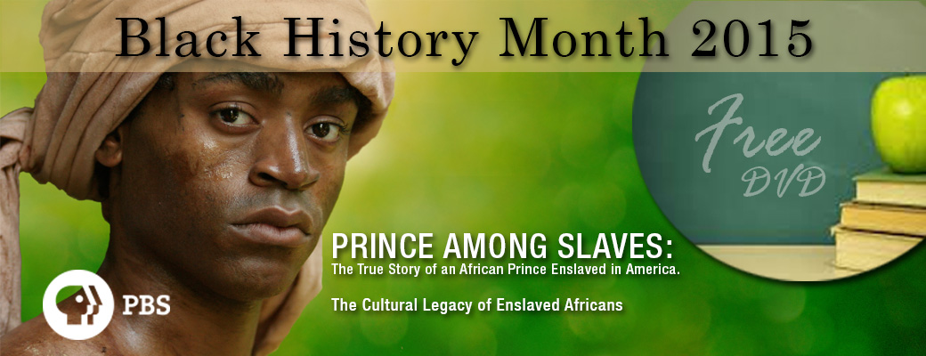 prince among slaves Prince among slaves recounts the true story of an african muslim prince who was captured and sold into slavery in the american south after 40 years of enslavement,.